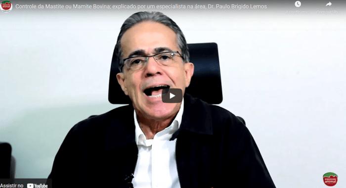 Controle da MASTITE (MAMITE BOVINA); explicado por um especialista na área, Dr. Paulo Brigido Lemos